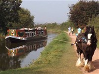 Horse Drawn Barge - Kennet & Avon Canal